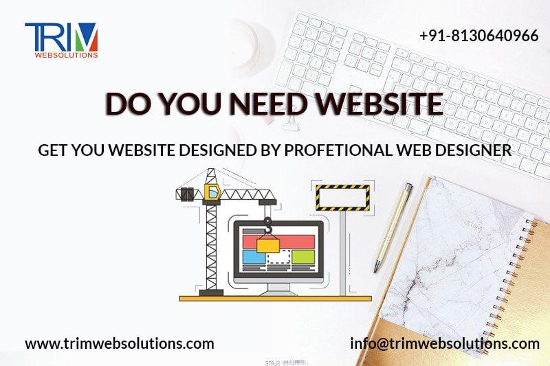 Best Website Designing Company in Delhi India-Trimwebsolutions